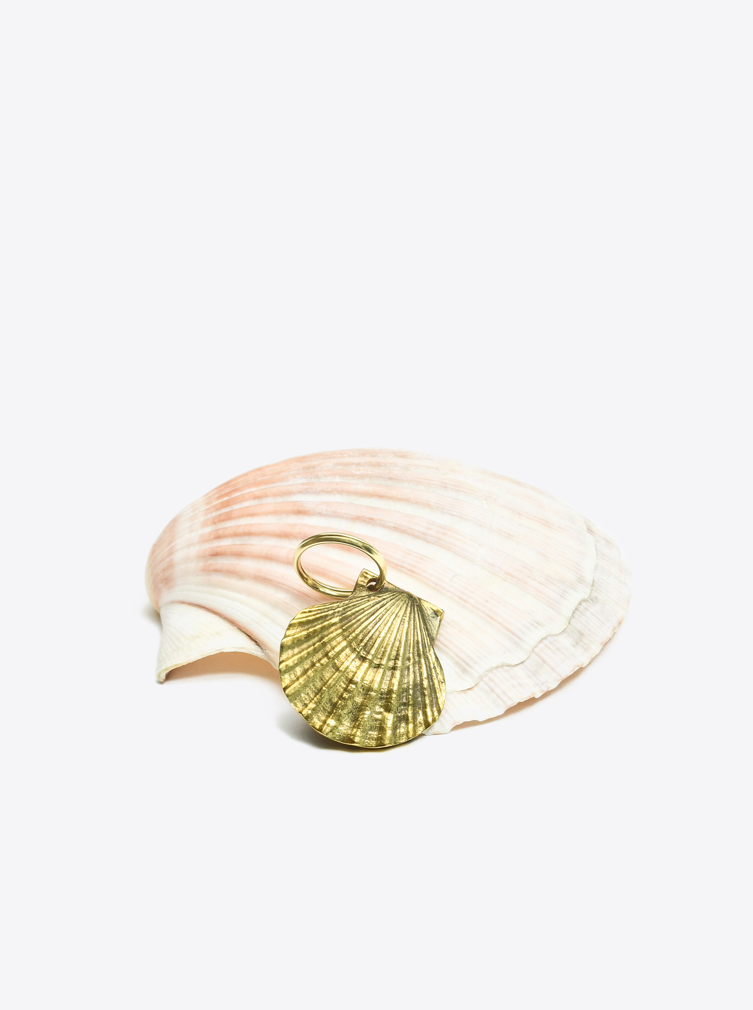 "Key Chain Shell ""Venus"" Brass"
