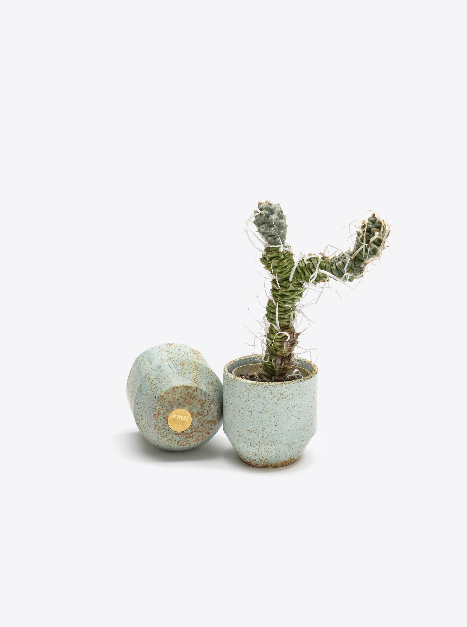 Mini Pot mint turquoise