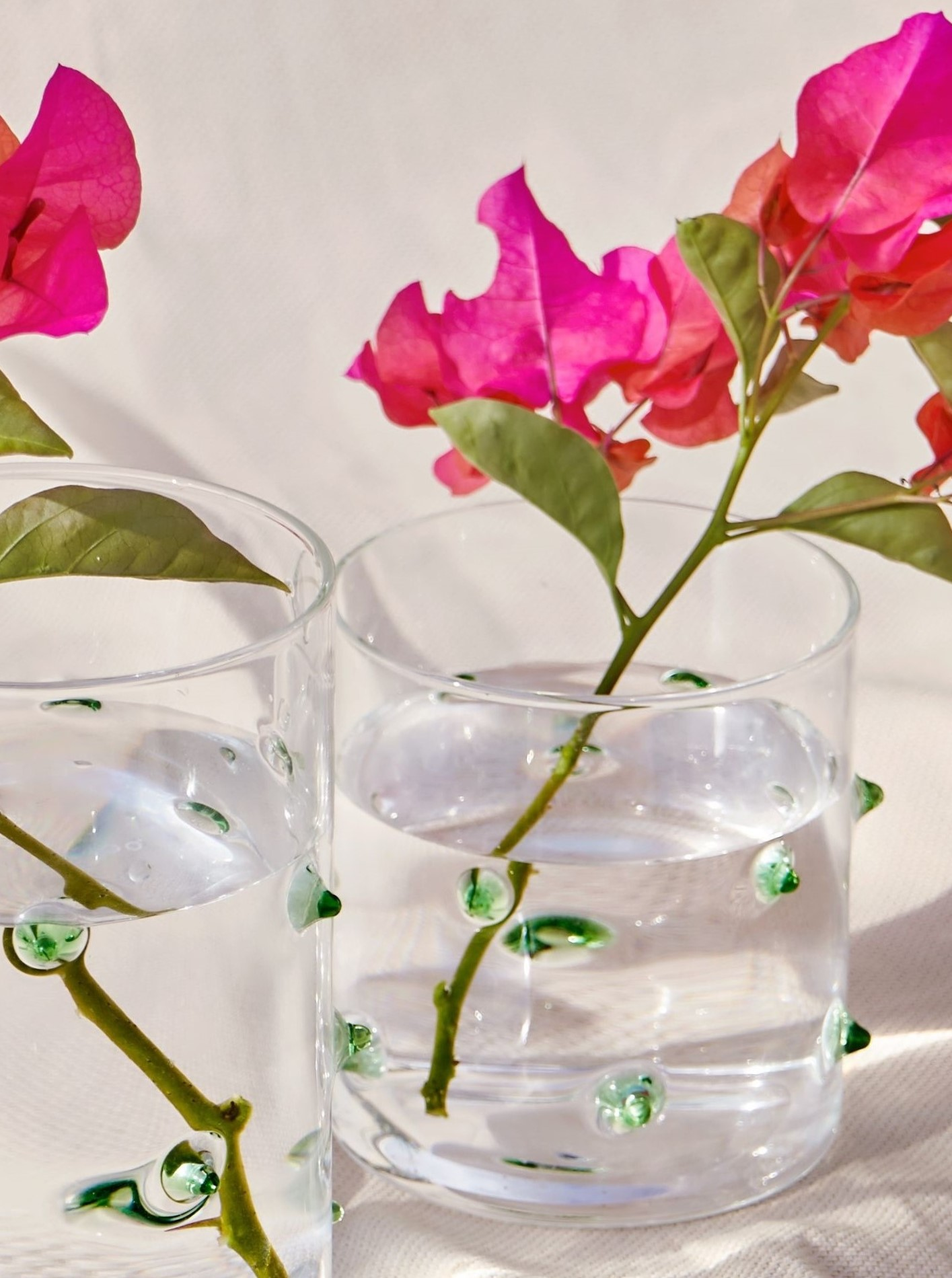 """Glas Container """"Agave"""" mit Deckel S"""