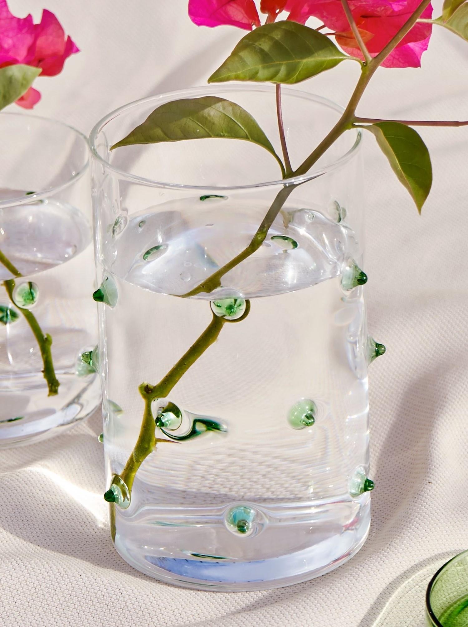"Glas Container ""Agave"" mit Deckel L"